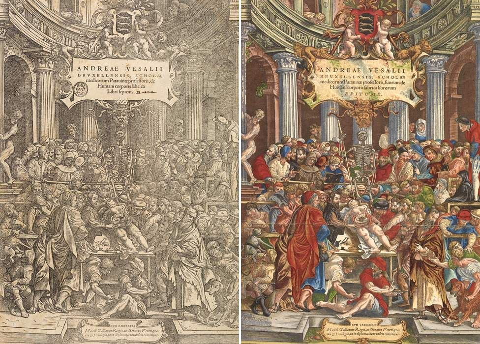 Front covers of the Fabrica and the Epitome - 16th Century medical books by Andreas Vesalius