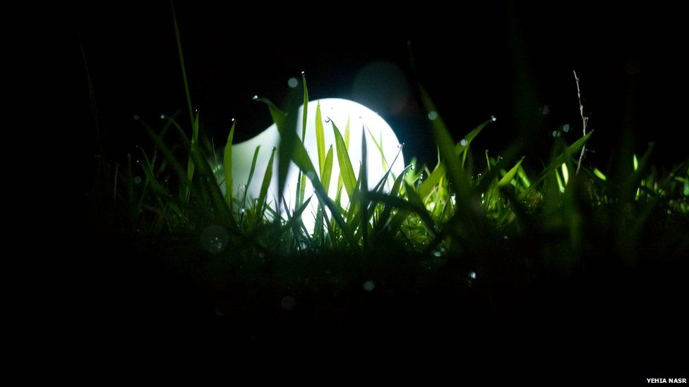 Light bulb in the grass