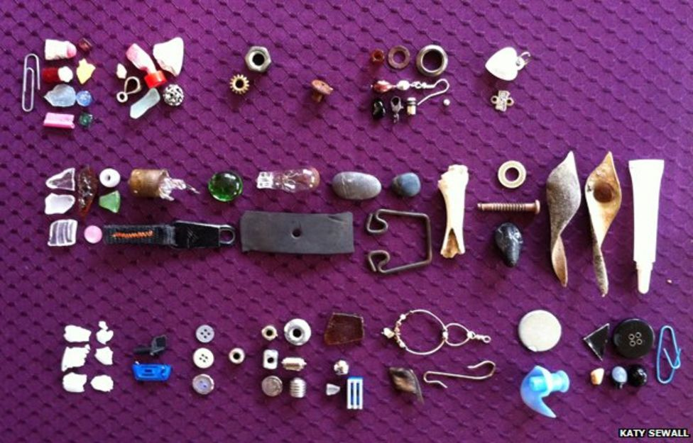 ID: against a purple lattice-patterned background, various trinkets from paper clips to pieces of glass and broken lightbulbs show treasures gifted by crows to Gabi Mann