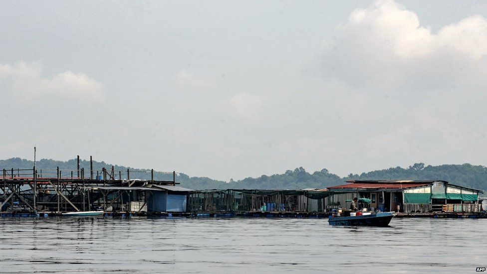 This photo taken on 26 March 2010 shows a floating fish farm in Singapore.