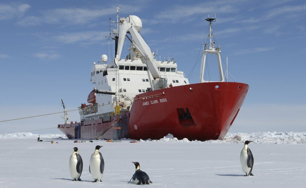 British Antarctic Survey ship with penguins in front