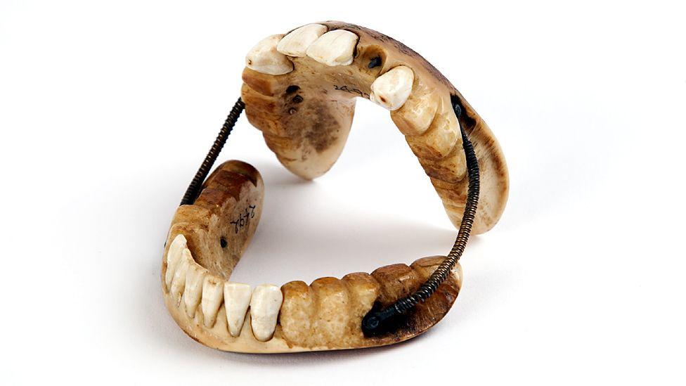19th Century dentures