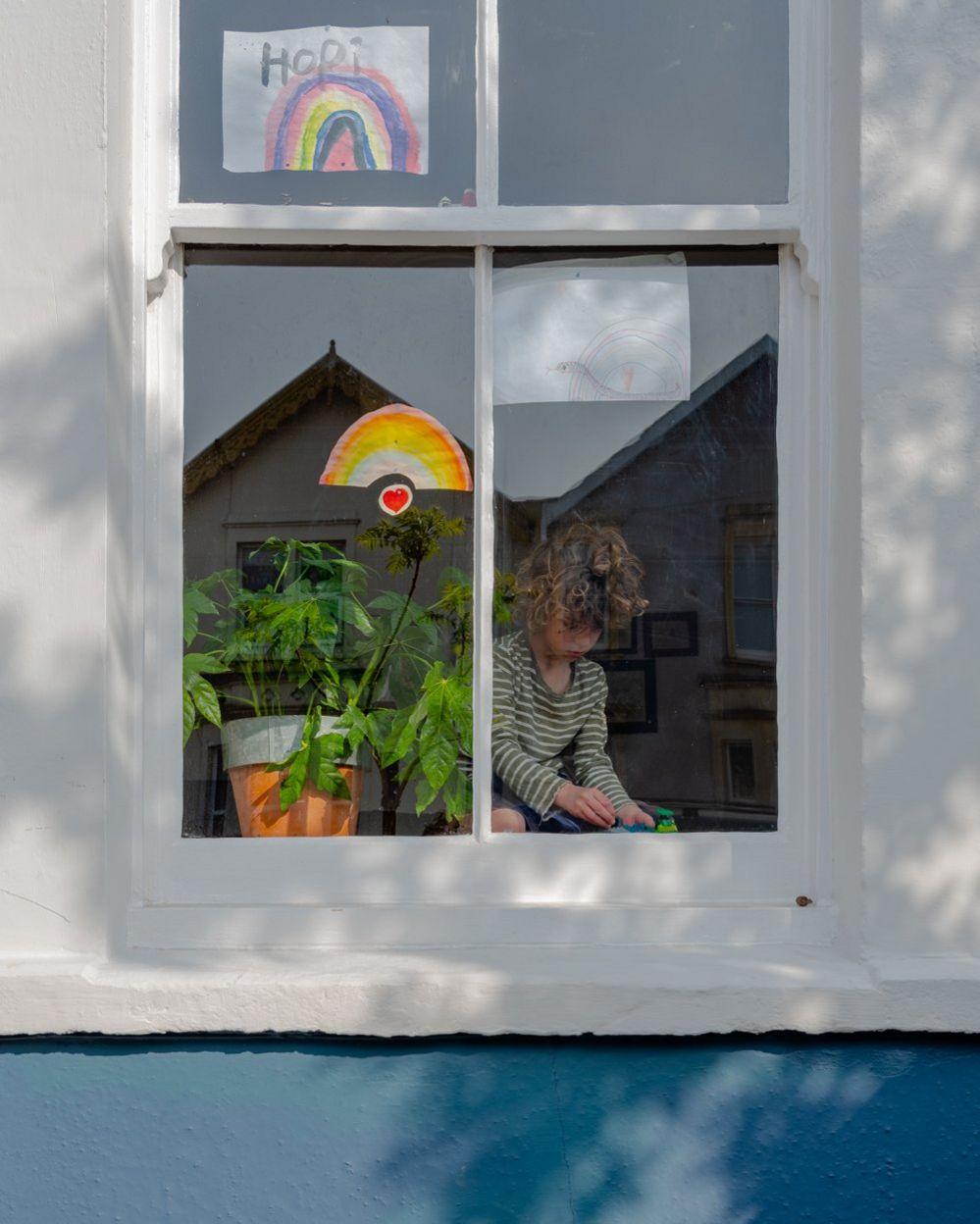 Hopi at the window