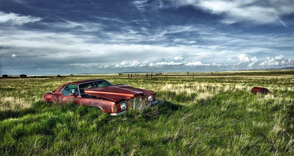 An abandoned car in an open field