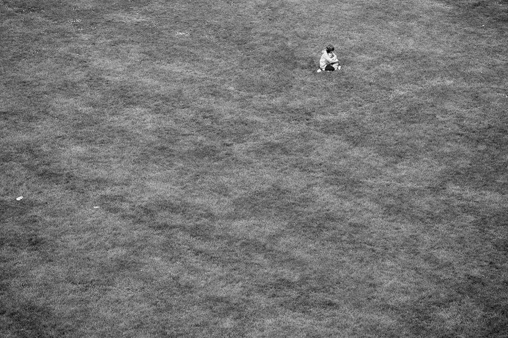 Photograph from the series Field, 2020