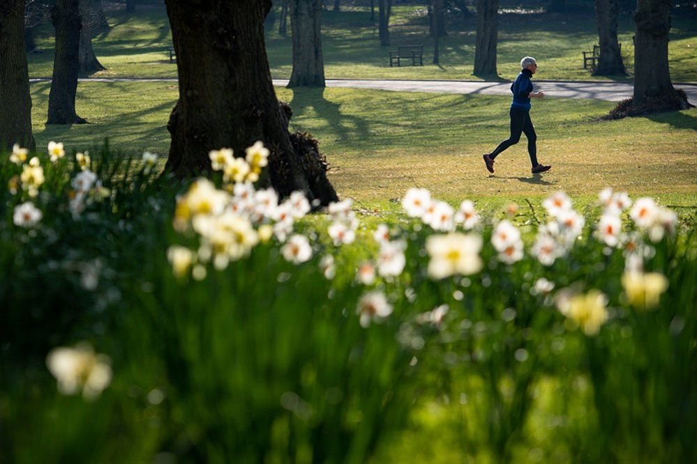 A jogger at Cannon Hill Park in Birmingham