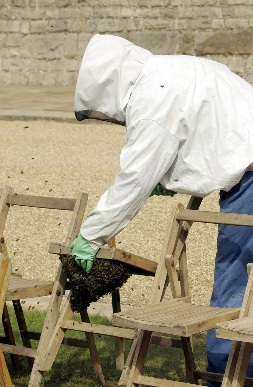 A beekeeper removes the bees