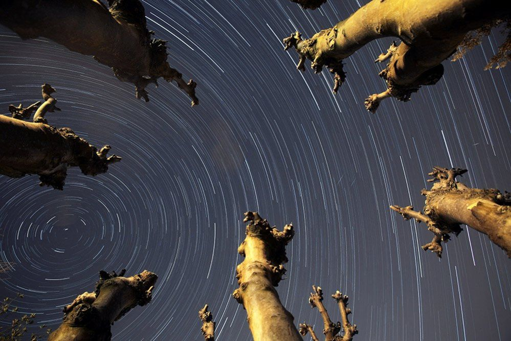 Star trails over Portishead, North Somerset - also seen at three small meteors