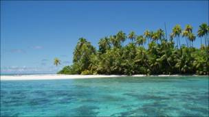 Archipiélago de Chagos. Foto: Anne & Charles Sheppard