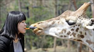 Compartiendo en un parque surcoreano