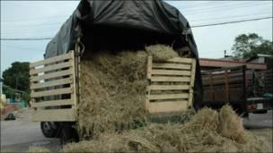 Camión con heno