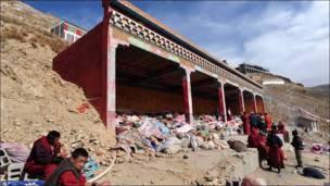 Monasteria tibetana