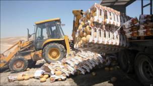 Autoridades palestinas destruyen melones de asentamientos israelíes.