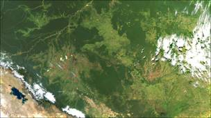 Incendios y deforestaciones en la región amazónica de Brasil