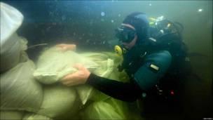 Buceador del cuerpo de bomberos polaco construye un muro de sacos de arena en el río Brdzie