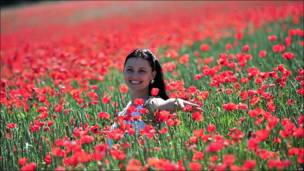 Mujer posa frente a campo de amapolas
