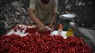 Época de cerezas en Pekín