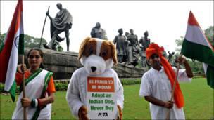 Campaña por la adopción de perros en India