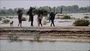 Un grupo de hombres carga madera y paja en Bilala Nagar, Pakistán