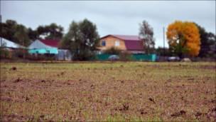 """Поле, принадлежащее ЗАО """"Невский"""", рядом с поселком Ворша Собинского района Владимирской области"""