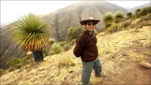 Moisés Anaya en Ambrancanchayocc, a 4.600 mts, donde comienza el bosque de puyas raimondi