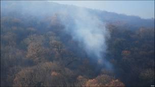 تصویری از جنگل های گرگان در حال سوختن