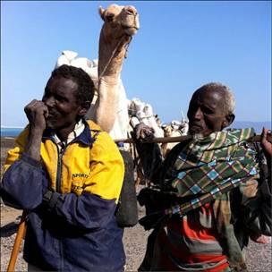 Торговцы солью в Джибути