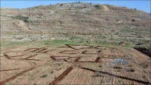 Испорченное поле палестинского фермера