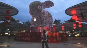 Một nam giới chụp ảnh thỏ tại khu nghỉ Santosa