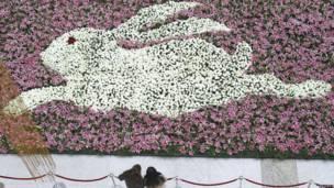 Hình thỏ tại công viên ở Nam Kinh