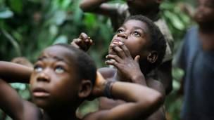 Дети наблюдают за собирателем меда