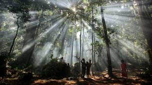 Жители джунглей в долине Конго