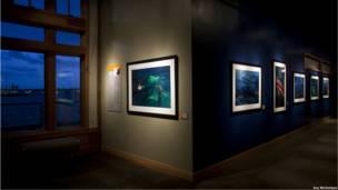 Exhibición de Daniel Beltra en el acuario de Seattle