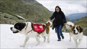 Кому море, а кому влітку снігу хочеться. Зокрема цим натхненним подорожувальникам усе літо доведеться провести в горах зі снігом. Швейцарія.