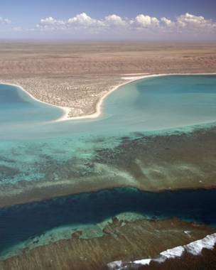Foto: Tony Howard/Western Australian Department of Environment and Conservation