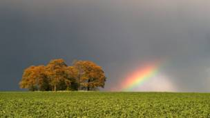 Fazenda em South Leicester, na Inglaterra. Foto: Mark Humpage/Caters