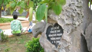 На памятной табличке указано, что это дерево посадил генсек Компартии Вьетнама