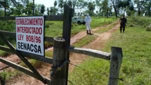 مزرعة في باراغواي