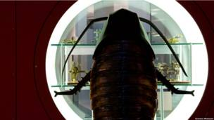 Cucarachas humanas en el Science Museum