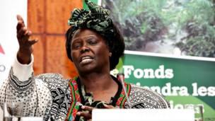 Profesa Wangari Maathai