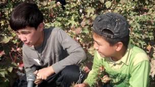 کودکان پنبه چین