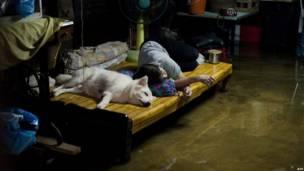 inundaciones en Tailandia