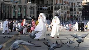 د نړۍ له هر ګوټه نژدې ۲.۵ میلیون مسلمانان د نومبر پر ۶مه، د یکشنبې په ورځ په مکه کې د حج مراسم ترسره کوي.