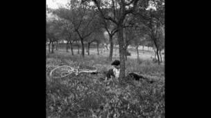 Một đôi nam nữ nằm bên gốc cây