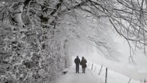 Прогулка неподалеку от швейцарского городка Санкт Галлен