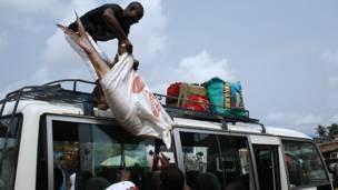 Hombre cargando pescado