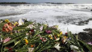 Hoa cầu nguyện cho linh hồn người đã khuất ở Iwaki, Fukushima