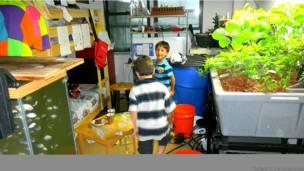 Dos de los hijos de Toole junto a un sistema de acuaponia