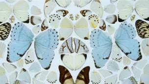 'Sympathy in White Major - Absolution II' (2006) - detalhe, Damien Hirst