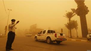 Песчаная бурая в Багдаде